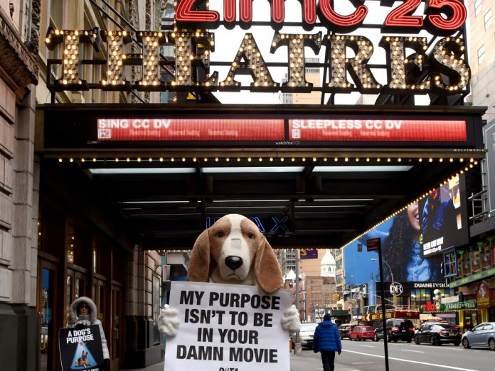 A Dog's Purpose Opens to $18.4 Million Amid Controversy