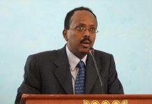 Dual Somali-US Citizen Elected President in Historic Vote