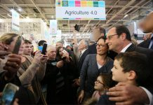 France's Hollande Fires Back at Trump over Paris Comments