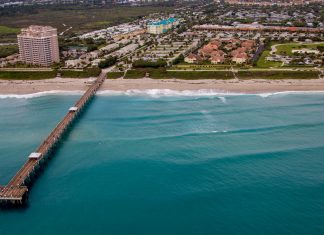 Visitor Spending Grows in The Palm Beaches