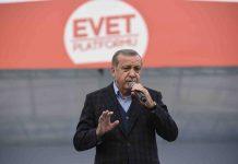 Turkey's President Erdogan: A popular and polarizing figure