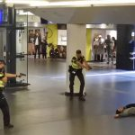 Two American Tourists Stabbed inAmsterdam
