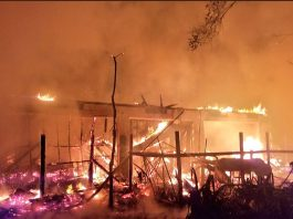 Dozens of Animals Die in Fire at Second Chance Wildlife Sanctuary