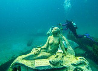 1000 Mermaids Helping to Save the Ocean