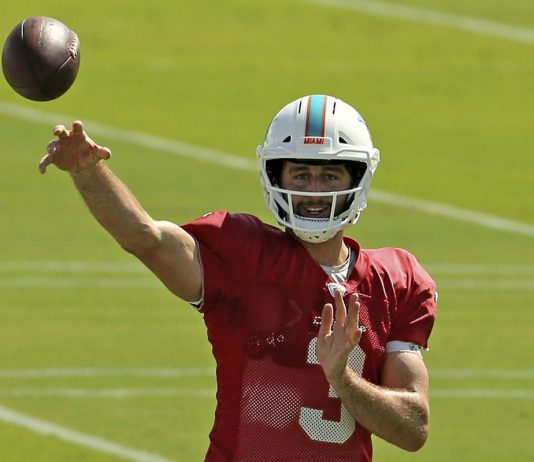 Dolphins Heading Toward Wrong End of History
