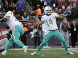 Upset of the Season: Dolphins Stun Patriots 27-24